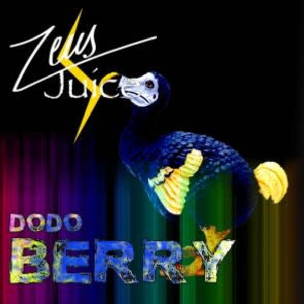 Dodoberry 80ml 80/20 0mg shortfill