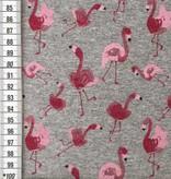 13,50€ p/m - Roze Flamingo's Op Grijs - French Terry