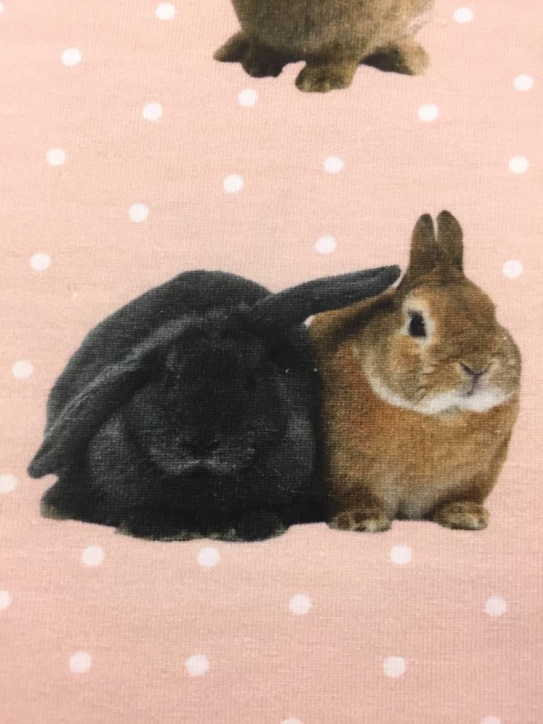 14,50€ p/m - Sweet Rabbits - Bedrukte Tricot