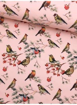 13,50€ p/m - Vogels op Zalmroze - Softshell
