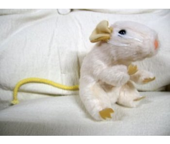 Baby muis handpop