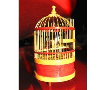 Zingende vogel in kooi