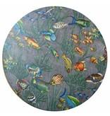 Remo Remo Ocean Drum Ø 55cm vissen afbeelding