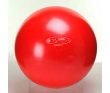 Gymnic Bodyball Classic rood