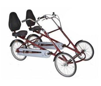 Roam Twinbike met zitjes