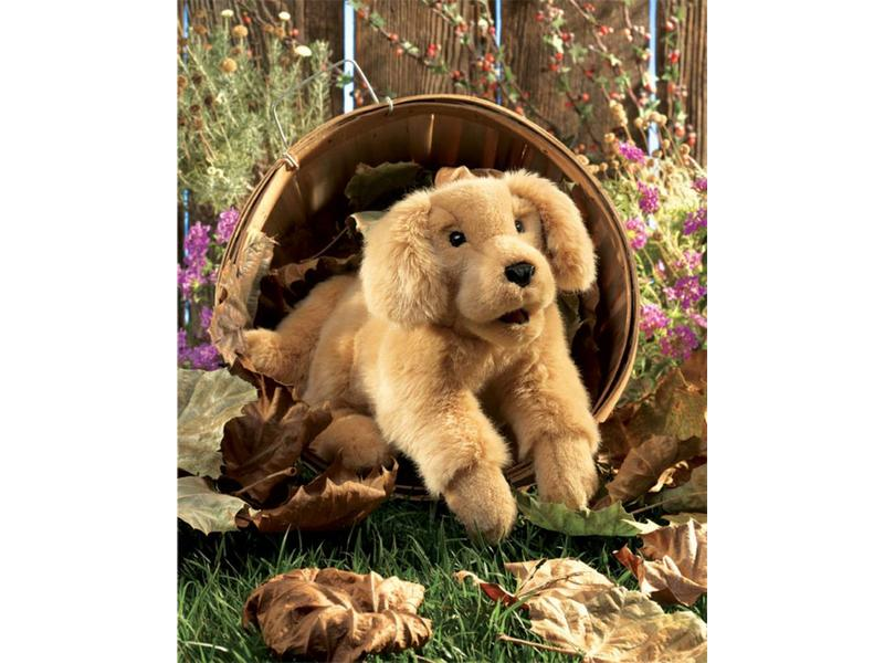 Handpop Golden retriever pup   35cm