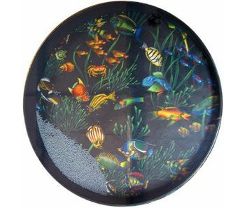 Remo Ocean Drum Ø 30cm vissen afbeelding