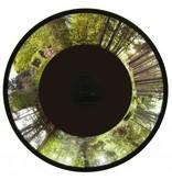 OPTIkinetics Effectwiel beeld groot Forest