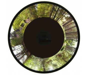Effectwiel beeld groot Forest