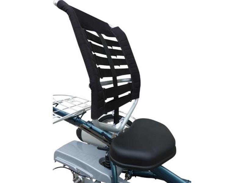 Van Raam VanRaam Easy Rider 2 basis, incl. verlichting, slot, bel, e.