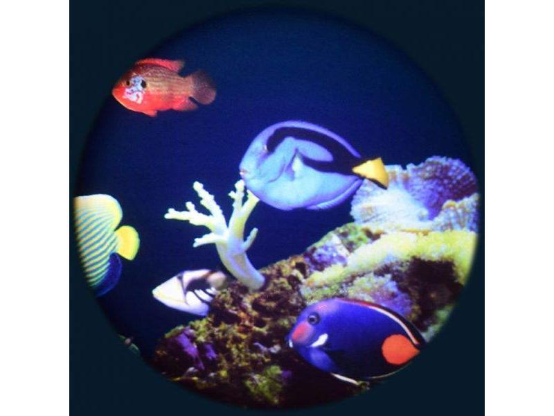 "OPTIkinetics Effectwiel groot 9"" thema: Coral Reef"