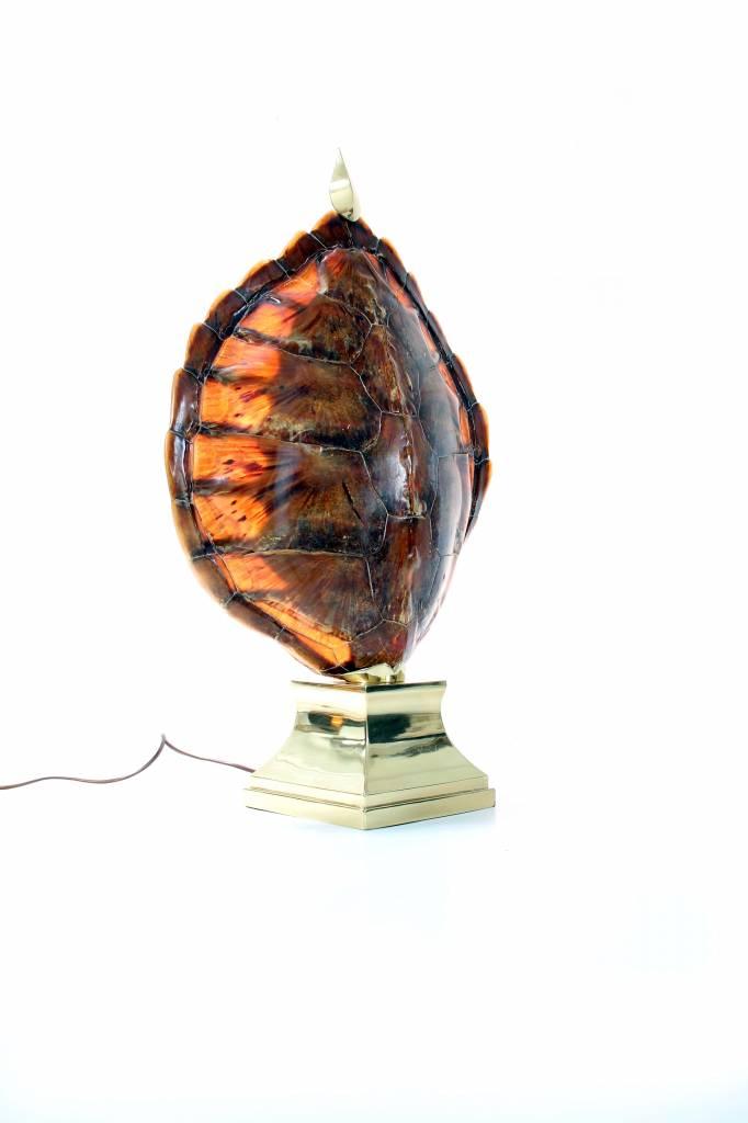 Koppel schildpad tafellampen
