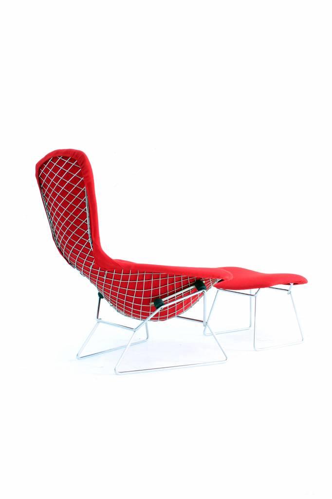 Vintage Bertoia Bird Chair