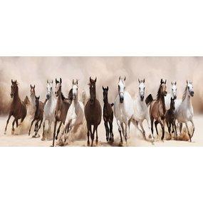 Paarden (160x60cm)