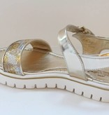 Zecchino d'Oro Zecchino d'Oro 81E A25-2502 4728