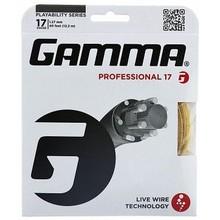 GAMMA PROFESSIONAL 17