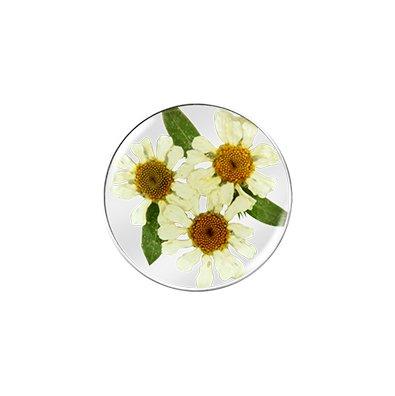 My imenso My imenso bloemen munt 24-1176