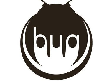 Bug Wooden