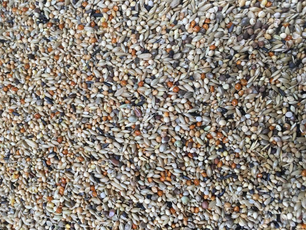 VDC - Vaesen Quality Seeds & Feeds DVWellensitticheZucht21 20kg
