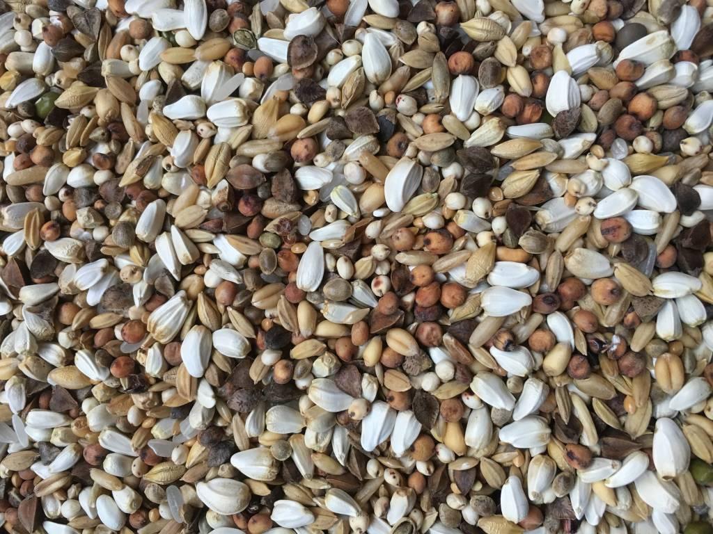 VDC - Vaesen Quality Seeds & Feeds DVPapageienLight39 20kg