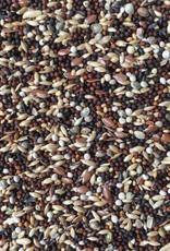 VDC - Vaesen Quality Seeds & Feeds DVGesangskanarien229 20kg