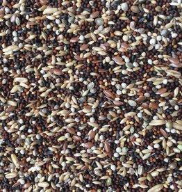 VDC - Vaesen Quality Seeds & Feeds DVZangkanarie229 20kg