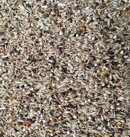 VDC - Vaesen Quality Seeds & Feeds DV Alario-Kanarie 272 15kg