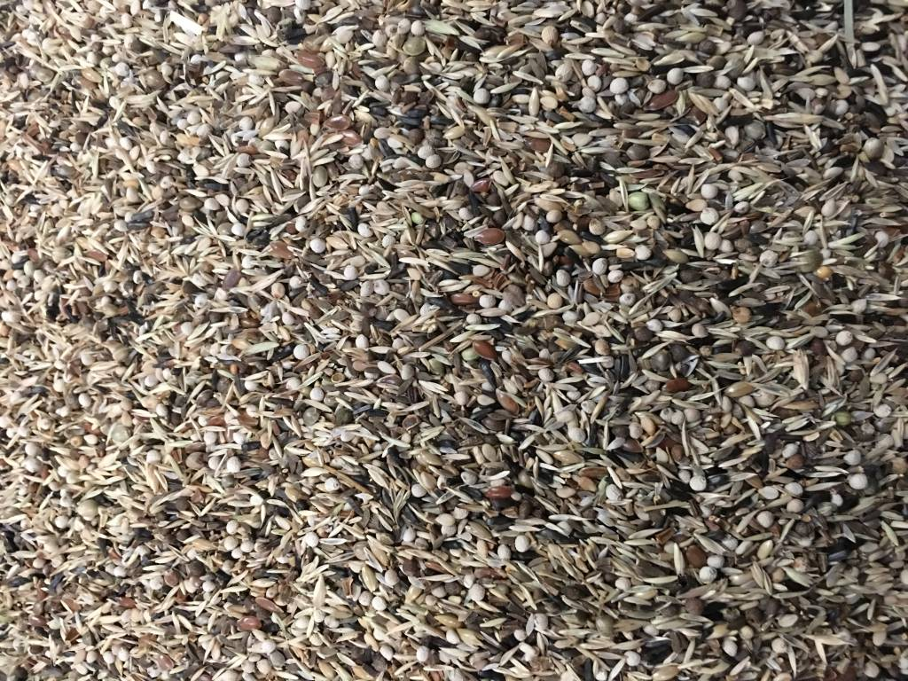 VDC - Vaesen Quality Seeds & Feeds DVSchwarzkopfZeisige +Knäuelgras202 13kg