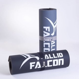 IMPACT - ADVANCED WORKOUT SYSTEM© - Pallid Falcon