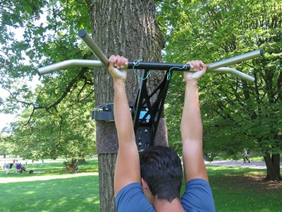 pull-up muscles chin-ups
