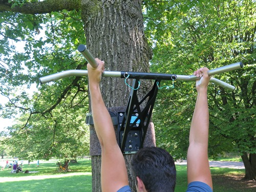 pull-up muscles hammer grip