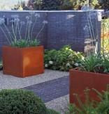Cortenstaal Plantenbak Vierkant