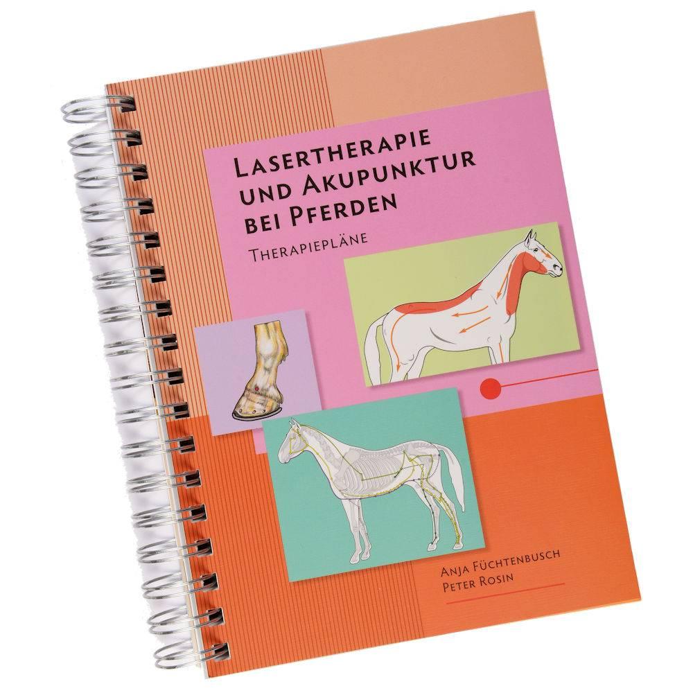 Lasertherapie & Laserpunktur bei Pferden - Therapiepläne