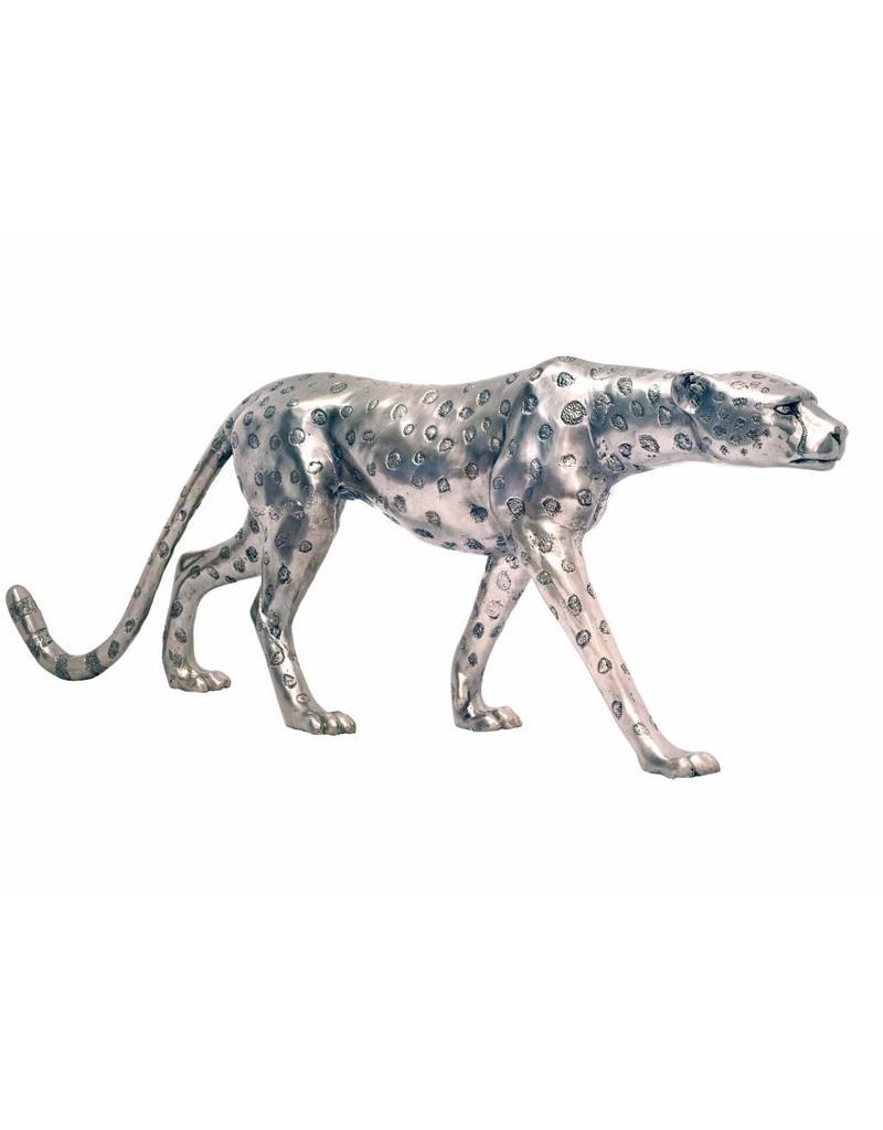 Grande Aristea – Silberfarbener Gepard
