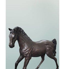 Morningstar II – Stehendes Pferd
