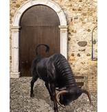 Taurus Impetus - Lebensgroße Stierskulptur in Angriffshaltung