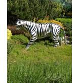 Ortrad – Weißer Tiger Bronzeskulptur