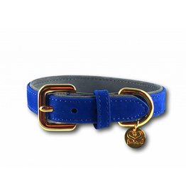 SIMPLY SMALL Collar - royal blue - SIMPLY SMALL