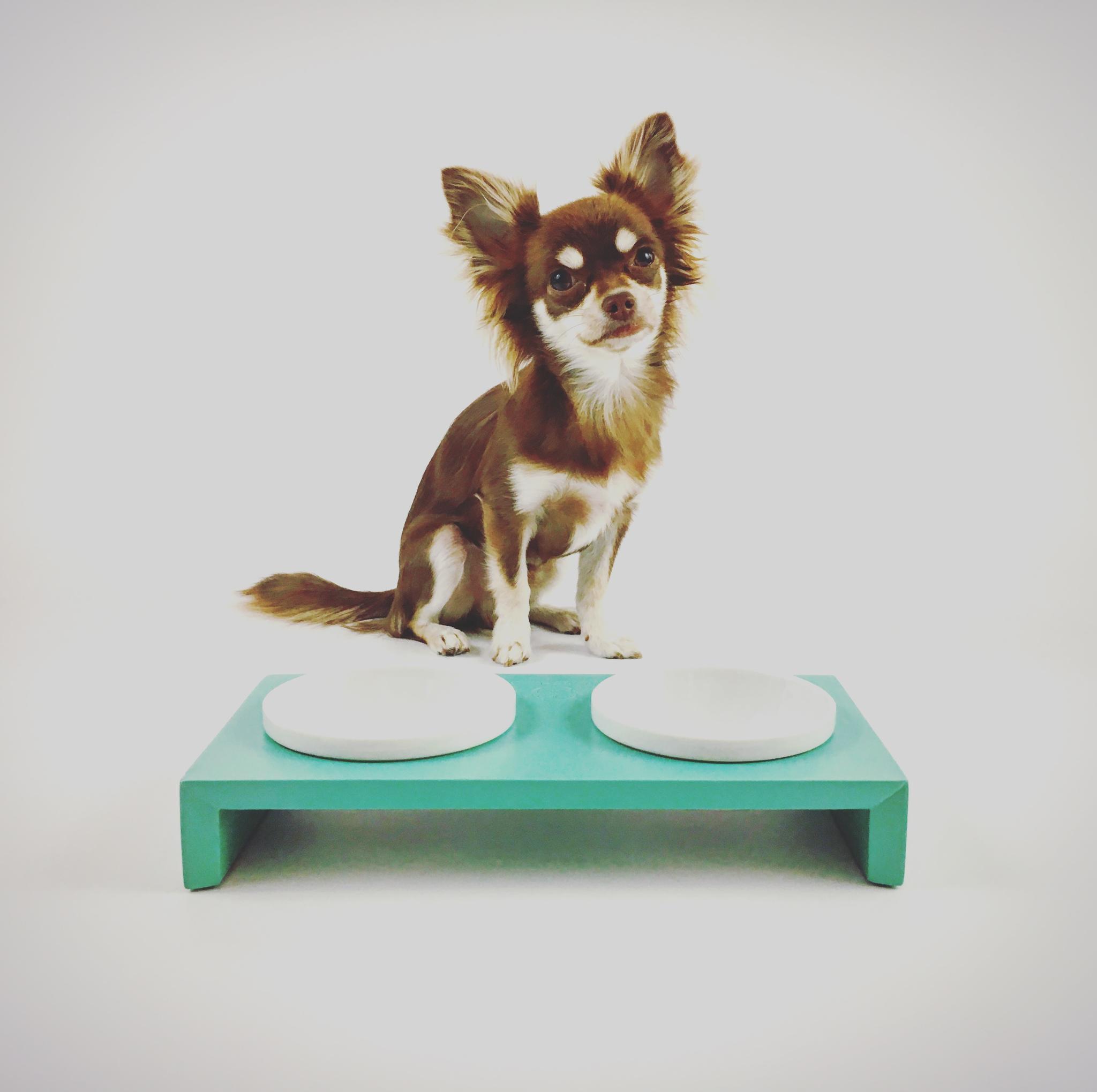 Hundebett Simply Small