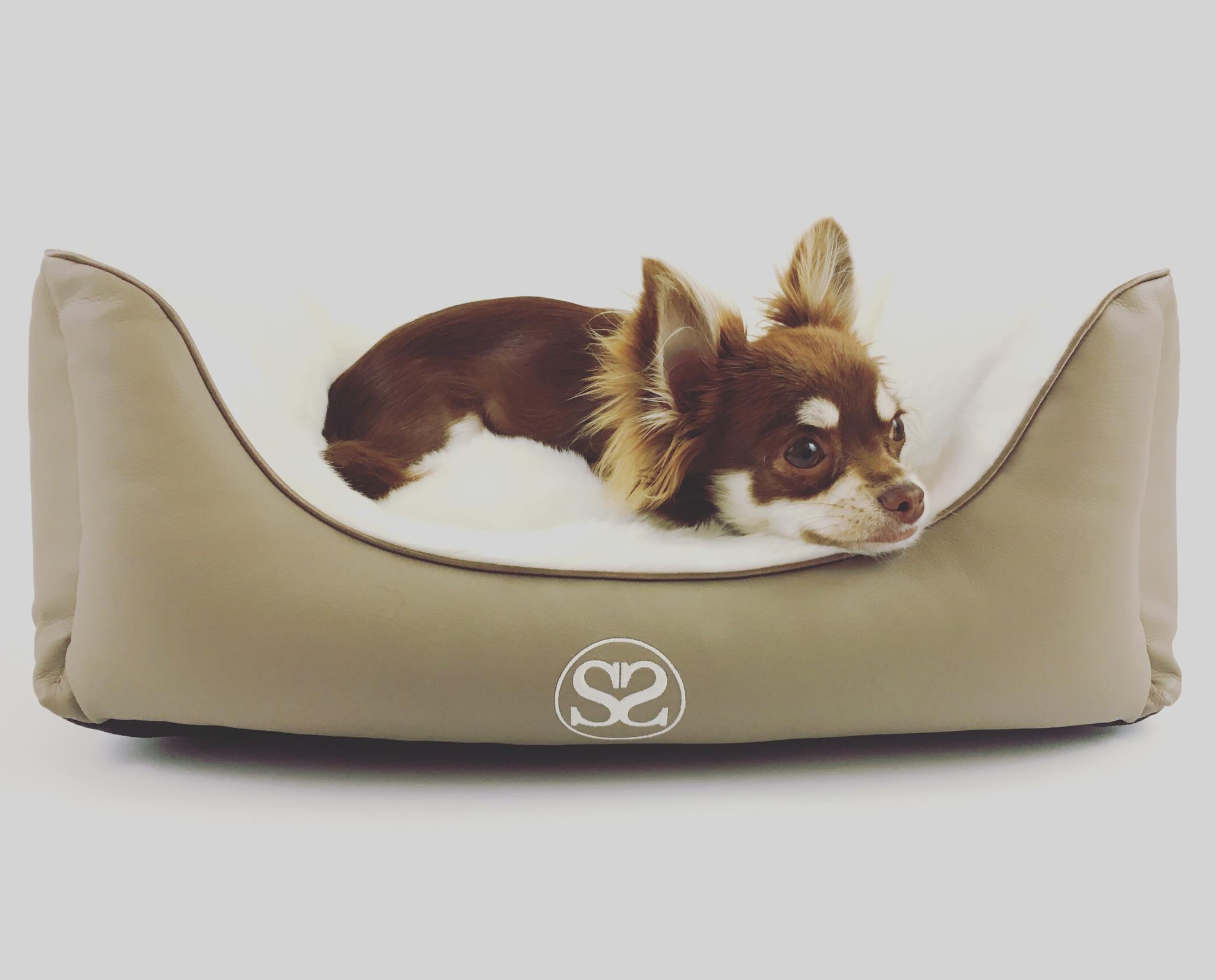 Chihuahua Hundebett