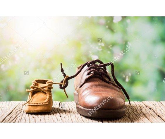 Converse Premium Waterproof Shoe