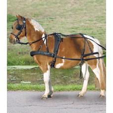 Star Synthetic brestplate singel harness