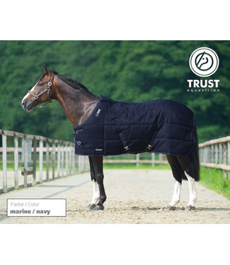 Trust Trust tetris stable rug medium, Navy, 145/195/6.6