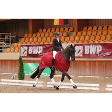 Young Dressage Talents Aanlegtesten jonge paarden (bereden proef)