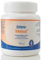 Entero-Teknosal® - Kautabletten, 100 Stück