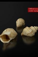 FREE 3D model shell