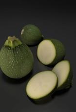 3D model round courgette - zucchini