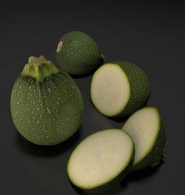 Round Courgette - Zucchini