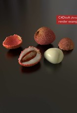 3D model lychee
