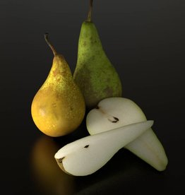 Pear (Conference)